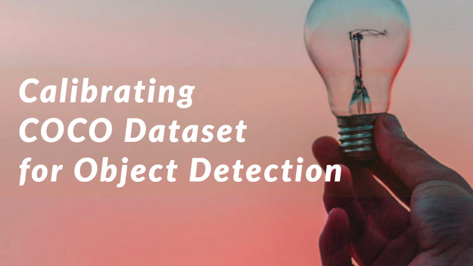 Calibrating Coco Dataset for Object Detection